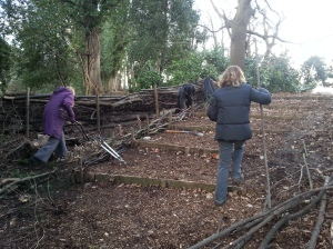the Tuesday volunteers installing a low dead hedge to the side of the steps for soil retention and to improve the look!